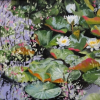 Lily Pads IV