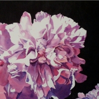 Glorious-Pink-Peonies-22x30-wc-small