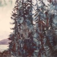 Mystic Forest III - Sunshine Coast